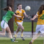 Ladies Gaelic Football Limerick v Antrim